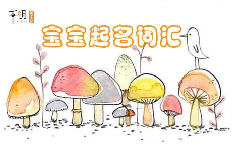 2021最火女宝宝名字